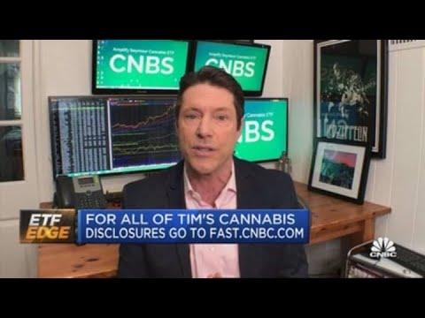 cannabis-countdown-3-big-headlines-moving-pot-stocks-this-week