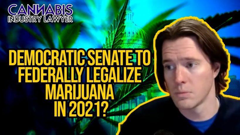 democratic-senate-to-federally-legalize-marijuana-in-2021