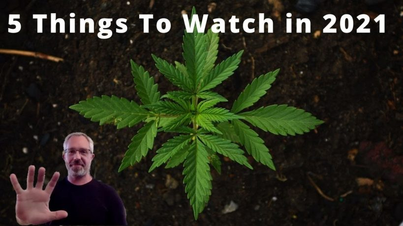 five-cannabis-things-to-watch-in-2021