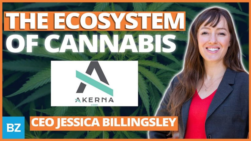 kern-backbone-of-the-cannabis-industry-zingernation