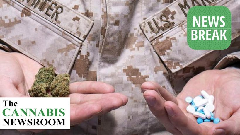 legislation-could-allow-veterans-access-to-medical-marijuana-through-veterans-affairs