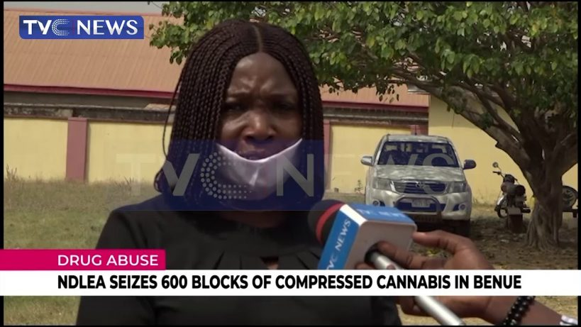 ndlea-seizes-blocks-of-compressed-cannabis-in-benue