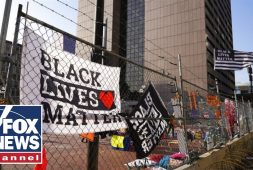 blm-co-founder-labeled-a-fraud-after-buying-luxury-homes