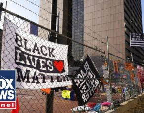 BLM co-founder labeled a 'fraud' after buying luxury homes
