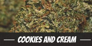 Strain the cookies and cream