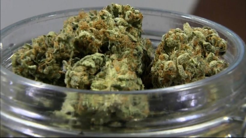 dfl-resurfaces-bill-legalizing-marijuana