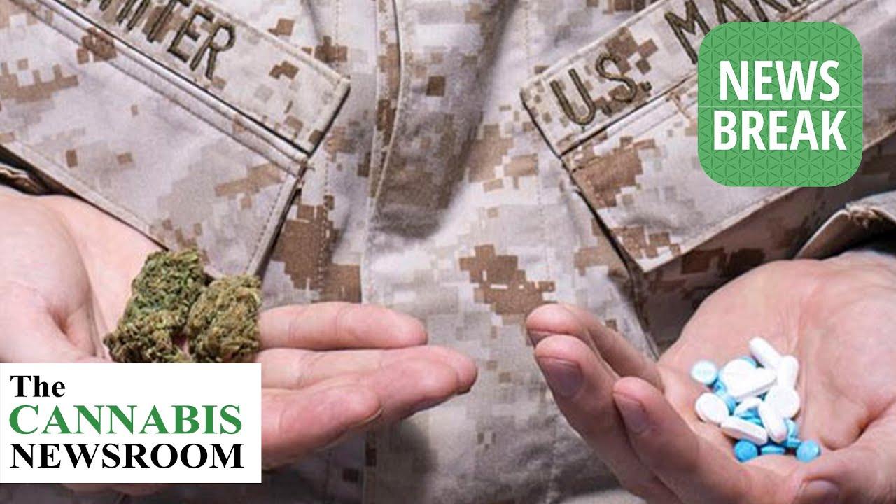 legislation-could-allow-veterans-access-to-medical-marijuana-through-veterans-affairs