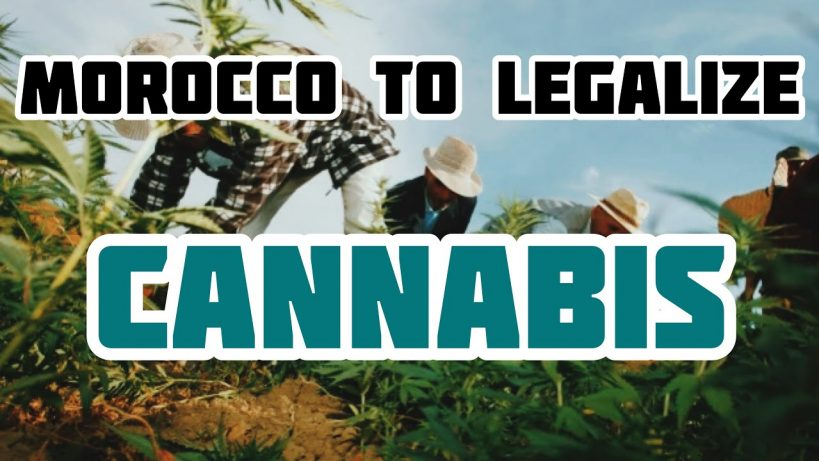 morocco-to-legalize-cannabis-next-week