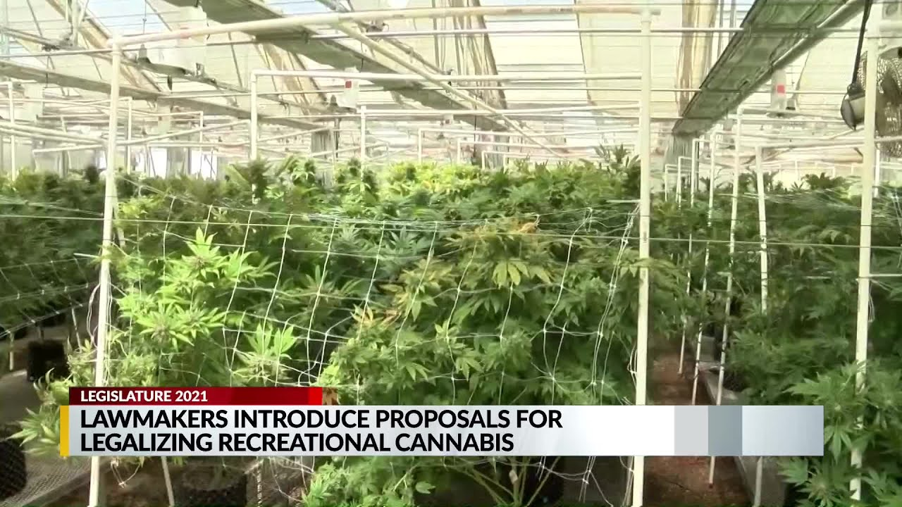 nm-lawmakers-introduce-proposals-to-legalize-recreational-marijuana