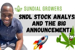 sndl-stock-sundial-growers-stock-analysis-price-targets-big-announcement-in-cannabis-laws