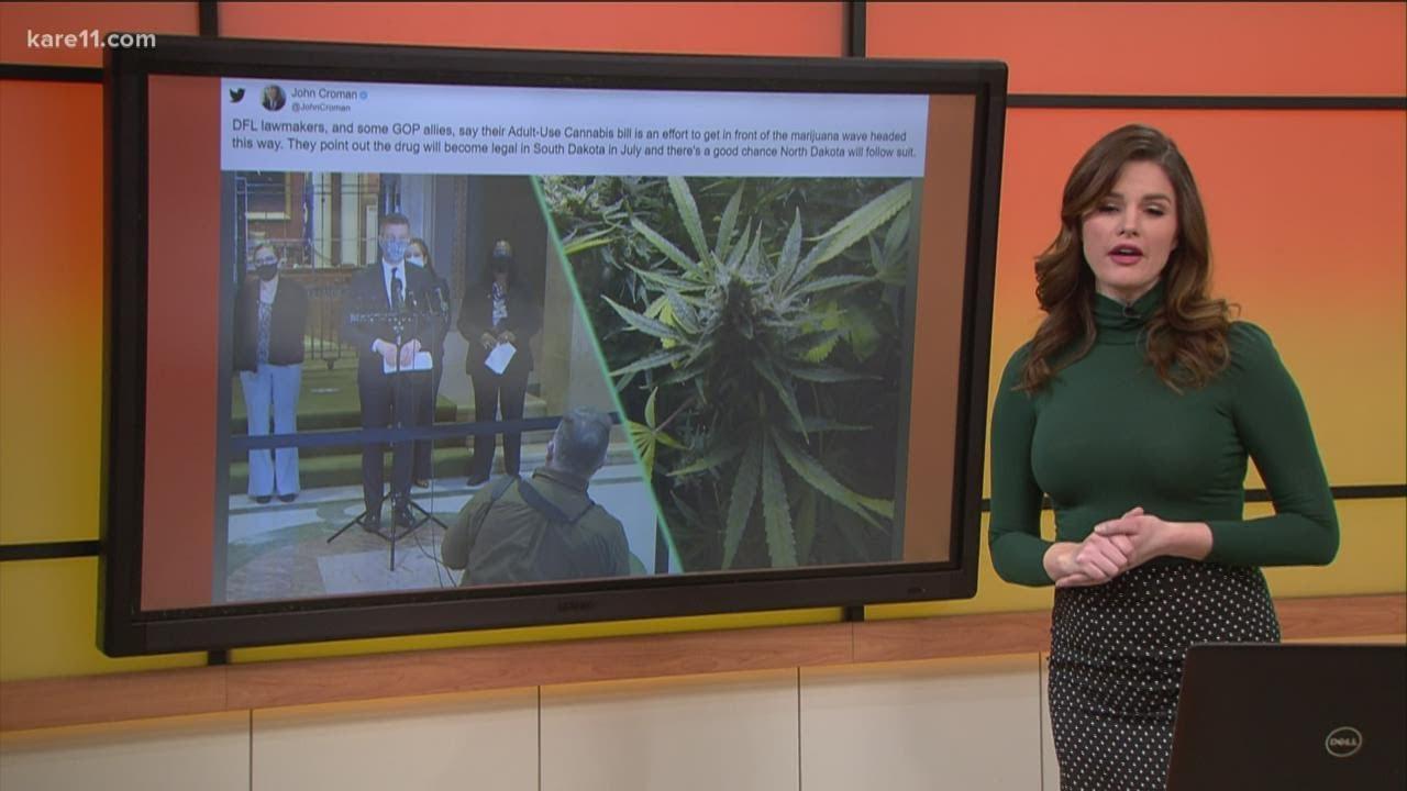 should-minnesota-change-its-marijuana-laws