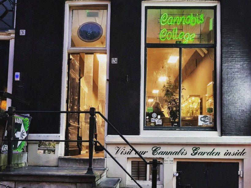 amsterdams-cannabis-college-public-cannabis-education