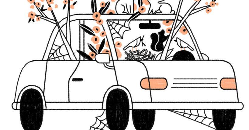 car-maintenance-during-the-pandemic