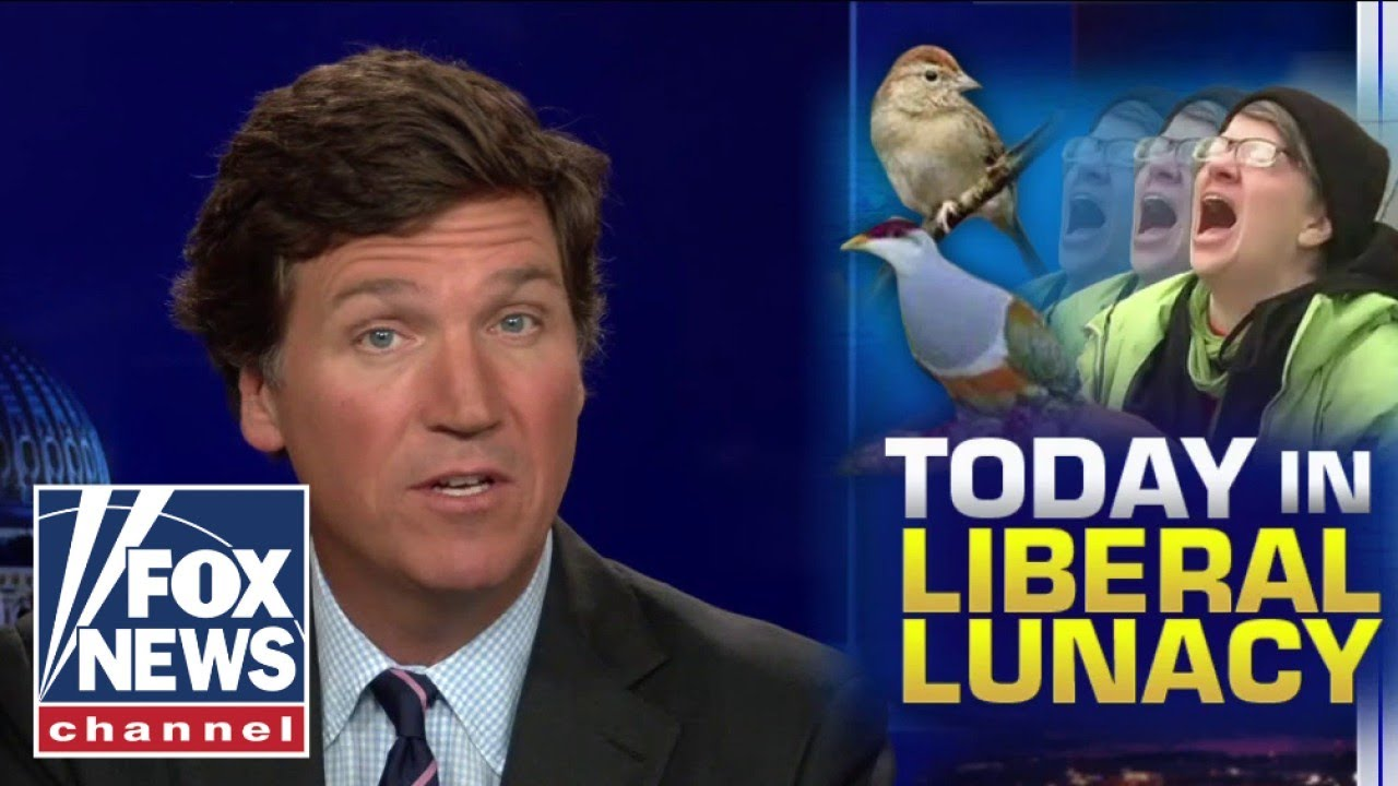 tucker-we-must-dismantle-all-systems-of-bird-supremacy